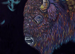 Night Buffalo